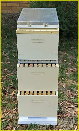 modern beehive components
